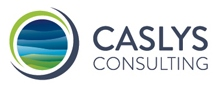Caslys Consulting Ltd. Logo
